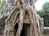 Храм в Ангкор